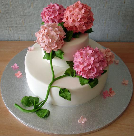 Хелла торты фото торты с розами фото и