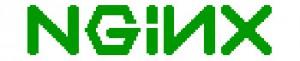 nginx logo, логотип nginx