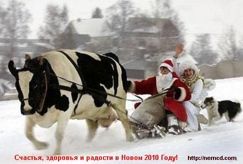 Новый Год - 2010