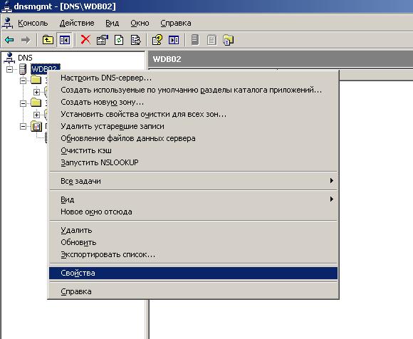 Настройка DNS в Windows 2003