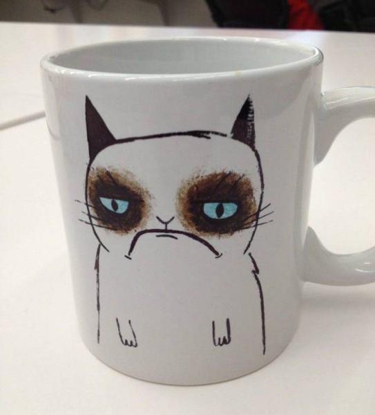 Grumpy Cat 04