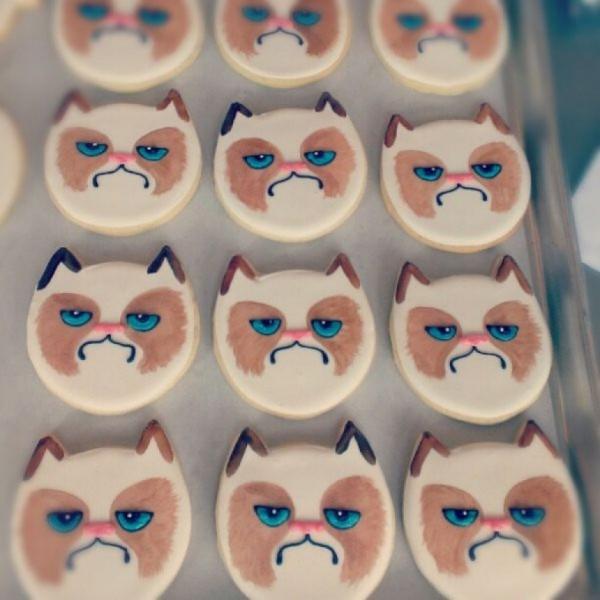 Grumpy Cat 05