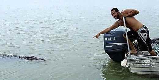 Смотрите крокодил плывет!
