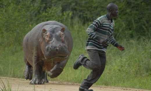 Вот почему кенийские бегуны такие быстрые
