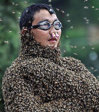 Пчелотерапия?