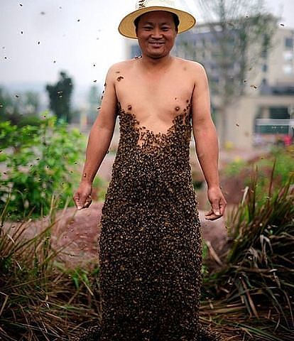 Пчеловоды интересный народ