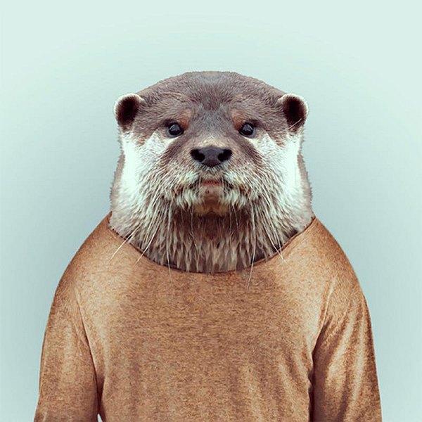 Animals-25