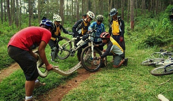 питон и велосипед