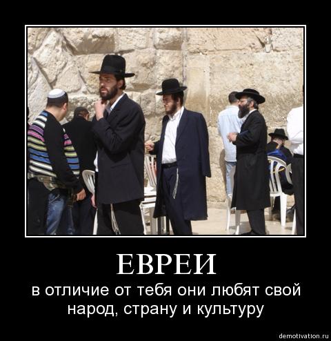 евреи любят свою страну