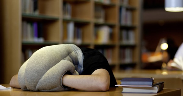 Подушка Страус в библиотеке