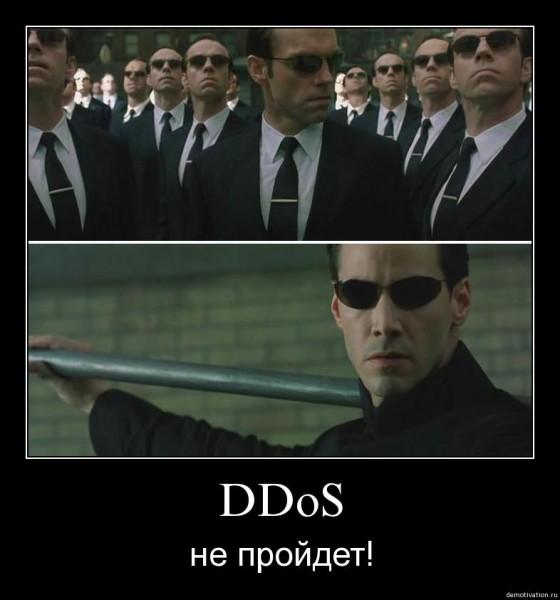 DDOS не пройдет