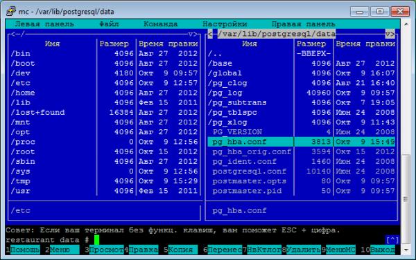 pg_hba.conf linux conf