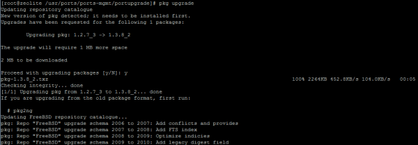 pkg upgrade freebsd 10