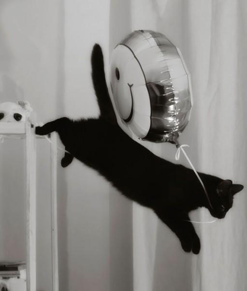 я улетаю на большом воздушном шаре..
