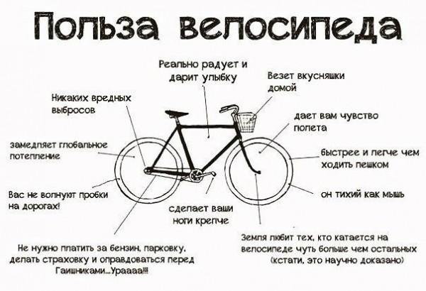 Польза велосипеда