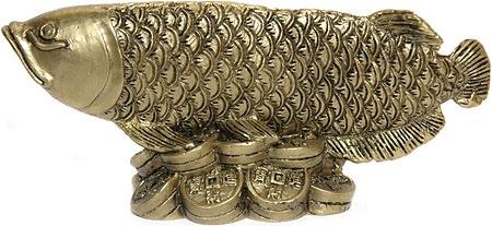 Амулет с арованой и деньгами - символ удачи и богатства