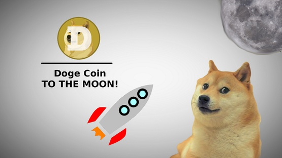 doge fly to the moon