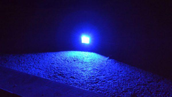 светим синим