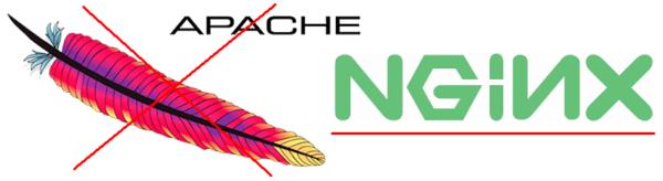 nginx logo, логотип nginx без апача