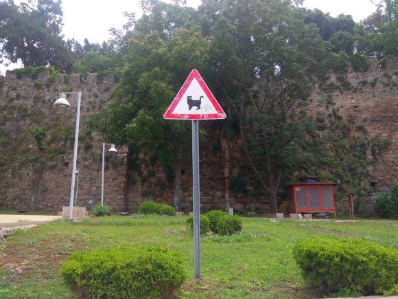Знак Внимание коты! Анталия