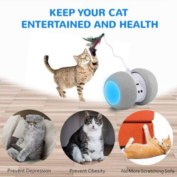 игрушка для поддержки здоровья кота