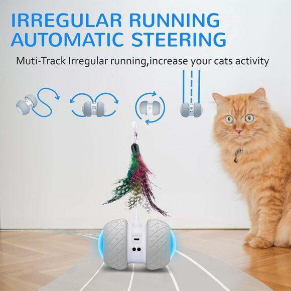 разное направление движения игрушки для кота