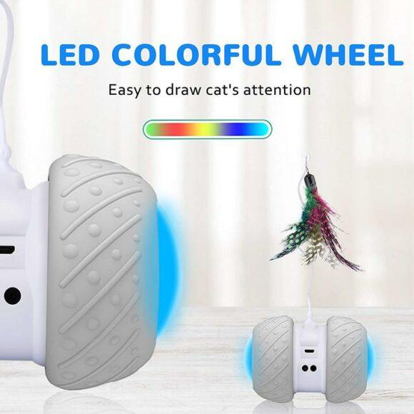 цветные светодиоды привлекают внимание кошки