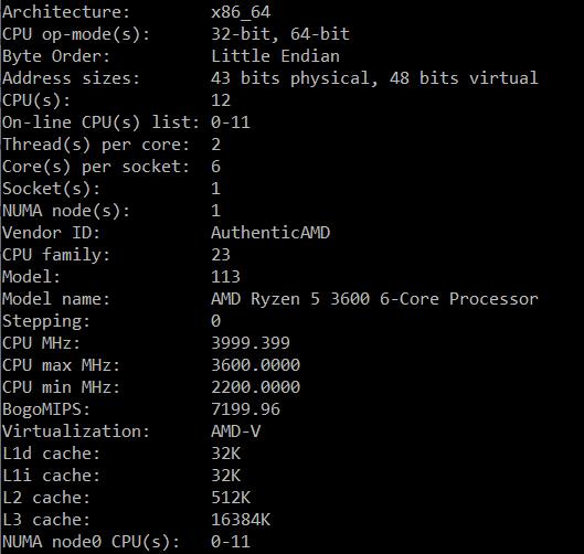 CPU Ryzen 3600 Debian, определяем процессор